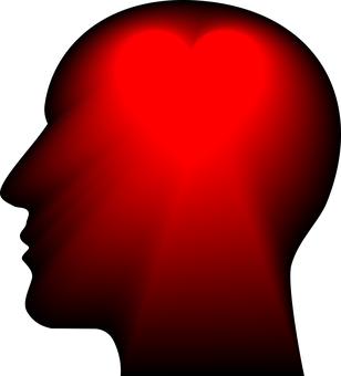 Should You Follow Your Heart Or Head?